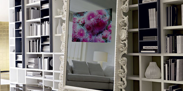 Specchio TV SPINI INTERNI
